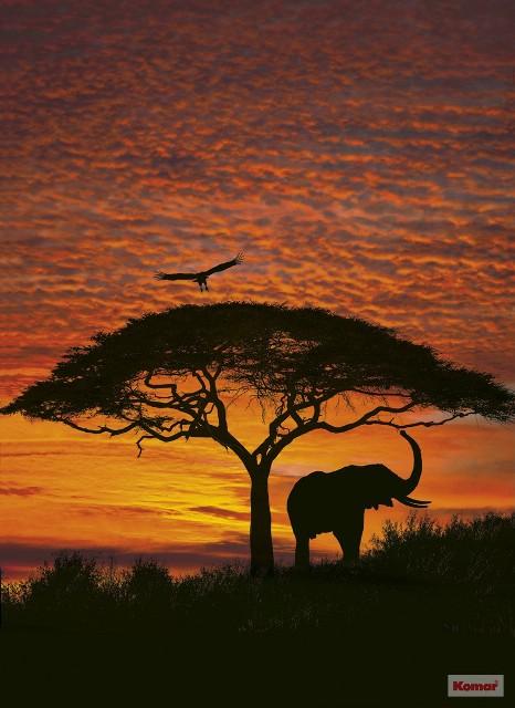 Fotótapéta 4-501 African Sunset