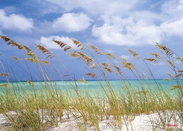 Fotótapéta Ocean Breeze 8-515