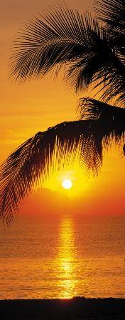 Fotótapéta Palmy Beach Sunrise 2-1255