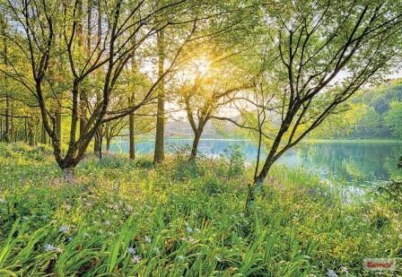 Fotótapéta Spring Lake 8-524