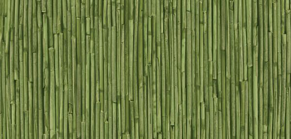 Rufa zöld 280-3177 öntapadós fólia 45 cm széles - Alkor